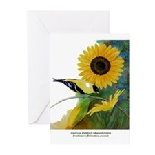 Goldfinch and Sunflower Greeting Cards (Pk of 20)