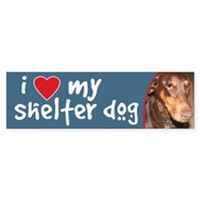 I Love My Shelter Dog bumper sticker - doberman