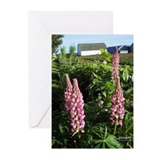 Lupin Blank Note Cards (Pk of 10)