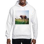 Prince Hooded Sweatshirt