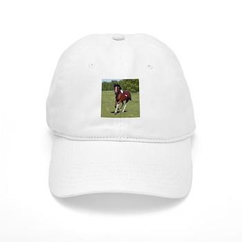 Pinto Foxtrotter Cap