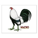 Macho Duckwing Gamecock Small Poster