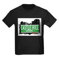 Castle Hill Av, Bronx, NYC T