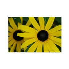 Black-Eyed Susans Rectangle Magnet