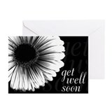 &quot;Get Well Soon&quot; Shadow Daisy Cards (6)
