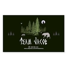 Team Jacob Decal