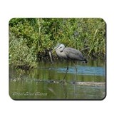 Great Blue Heron fishing Mousepad