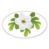 Pear blossom Decal