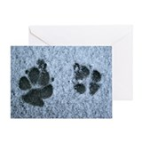 Dog Paw Prints in Snow Greeting Card