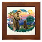 St Francis #2 / Poodle (ST-Ch) Framed Tile