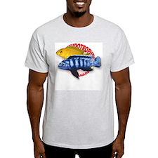 Saulosi Ash Grey T-Shirt