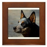 Cool Heeler Framed Tile