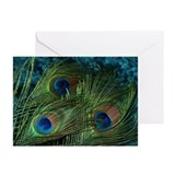 Green Peacock Feather Greeting Cards (Pk of 20)