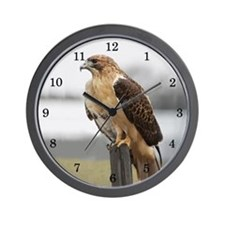 Hawk Wall Clock