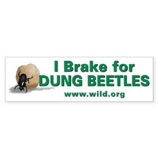 Funny Wild foundation Bumper Sticker