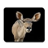 Kudu Ears Mousepad