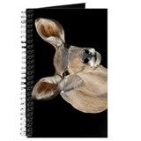 Kudu Ears Journal