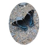 BLUE SWALLOWTAIL Ornament (Oval)