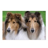 Unique Dogs Postcards (Package of 8)
