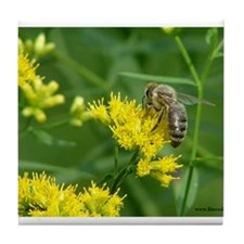 Honeybee working on goldenrod Tile Coaster