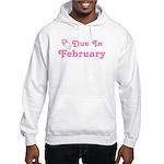 February Baby Diaper Pin Hooded Sweatshirt