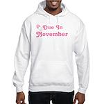 November Baby Diaper Pin Hooded Sweatshirt