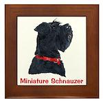 Miniature Schnauzer Framed Tile