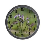 Male hummingbirds Wall Clock