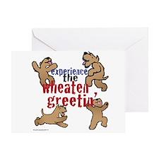 Wheaten Greetin' Greeting Card