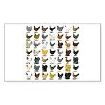 49 Hen Breeds Sticker (Rectangle)