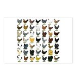 49 Hen Breeds Postcards (Package of 8)