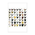 49 Hen Breeds Mini Poster Print