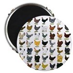 49 Hen Breeds Magnet