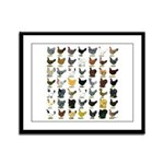 49 Hen Breeds Framed Panel Print