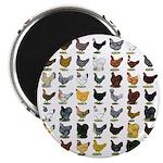 """49 Hen Breeds 2.25"""" Magnet (10 pack)"""