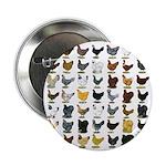 """49 Hen Breeds 2.25"""" Button (100 pack)"""