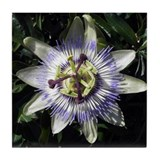 Passion Flower Art Tile