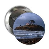 "Battery Point Lighthouse & Gull 2.25"" Button"