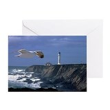 Lighthouse & Seagull Greeting Cards (Pk of 20)