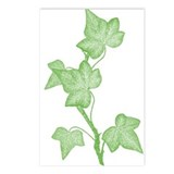 Ivy Botanical Postcards (Package of 8)