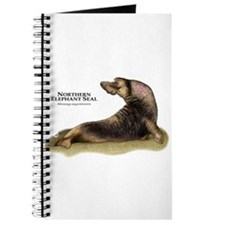Northern Elephant Seal Journal