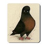 Kite Tumbler Pigeon Mousepad
