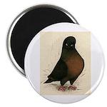 "Kite Tumbler Pigeon 2.25"" Magnet (10 pack)"