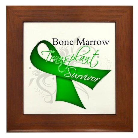 Ribbon BMT Survivor Framed Tile