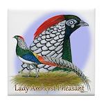 Lady Amherst Pheasant Tile Coaster