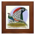 Lady Amherst Pheasant Framed Tile