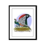 Lady Amherst Pheasant Framed Panel Print
