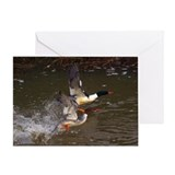 Merganser's Take-off by BuffaloWorks Greeting Card