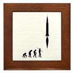 Astronaut Evolution Framed Tile