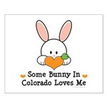 Some Bunny In Colorado Loves Me Small Poster